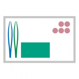 MediSet Set traitement de plaies No 4b